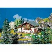 130287 1 87 Büyük Dağ Evi