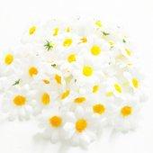 Papatya Çiçek Büyük Boy 25 Adet