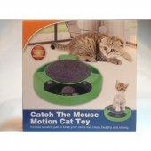 Kediler İçin Fare Yakalama Oyunu