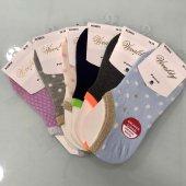 6 Lı Paket Vivaldy Bayan Sneaker Koton Çorap