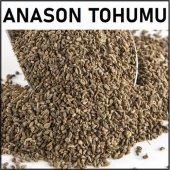 Anason 250gr Anason Tohumu