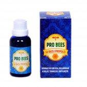 Pro Bees Su Bazlı Propolis 30 ML