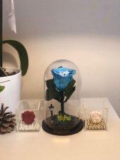 Cam Fanusta Dallı Mavi Solmayan Gül