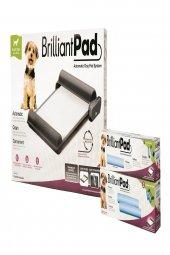 Brıllıantpad Otomatik Köpek Tuvaleti