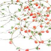 çiçekli Halka Taç