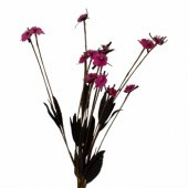 Pembe Pıtır Demet Çiçek