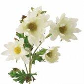 Papatya Krem Dallı Çiçek