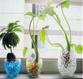 Suda Büyüyen Vazo ve Akvaryum Taşları - Yeşil-3