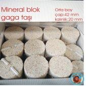 Mineral Blok Gaga Taşı 1 Adet