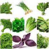 1000 Adet Muhteşem Yeşillik Tohumu Paketi 10...