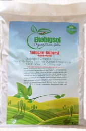 Ekobigsol %100 Organik Solucan Gübresi Katı (Granül) 1 Kg