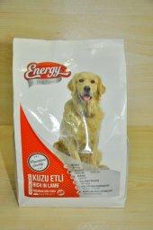 1 Kg yetişkin Etli köpek maması Energy