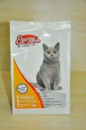 500 gr yetişkin Tavuklu kedi maması Energy-2
