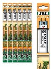 Jbl Solar Reptıl Jungle T8 15w 438 Mm 9000k