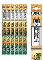 Jbl Solar Reptıl Jungle T8 18w 590 Mm 9000k