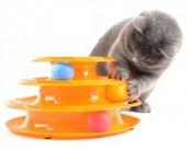 Tower Of Tracks Hareketli Kedi Oyuncağı Eğlenceli Kedi Top Oyunu
