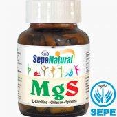 Mgs L Karnitin Çitosan Spirulina 90 Kapsül 410 Mg
