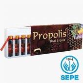 Propolis Extract Ekstrakt Likit 300mg X 10ml X 10 Ampul