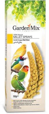Gardenmix Platin Sarı Dal Darı 150 Gr