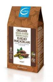 The Lifeco Organik Şeker Kamışı Şekeri Kaplı Kakao Parçacıkları 100 Gr