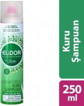 Elidor Kuru Şampuan Yağlı Saçlar İçin 250 ml-2
