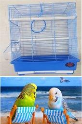 Muhabbet Kuşu Kafesi Mavi (Dayang)