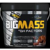 BIGJOY BIGMASS GAINER GH+ 5KG +3 HEDİYE-3