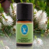 Nuka Hint Defnesi (Tea Tree) Çay Ağacı Yağı 10 Ml. (Organik)
