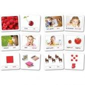 Zeka Yayınevi Bebek Kavram Kartları - (16-48 Ay) Sağ Beyin Zeka K-3