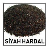 Hardal Tohumu Siyah 50gr