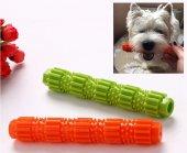 Köpek Diş Fırçası, Isırma Oyuncağı