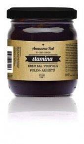 Anavarza Stamina Arı Sütü Polen Propolis Krem...