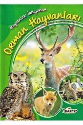 Hayvanları Tanıyorum Orman Hayvanları Teleskop...
