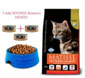 Matisse Kısır Kediler İçin Somonlu Mama 10 Kg