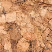 Trixie Teraryum Altlığı, Hindistancevizi Lif...