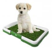 Yavru Köpek Tuvalet Eğitim Seti Pet Zoom Potty Trainer Köpek Tuvaleti Kedi Köpek Tuvalet Eğitimi-7