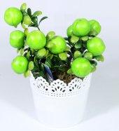 Yuvarlak Dantelli Saksıda Yapay Elma Çiçeği 17 Cm Yeşil