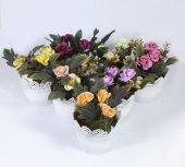 Dantelli Saksıda Yapay Gül Çiçek 15 Cm 7 Renk