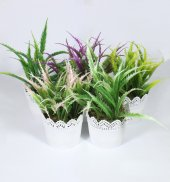 Dantelli Saksıda Yapay Aloevera Çiçek 20 Cm 5 Cm