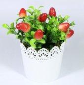 Yuvarlak Dantelli Saksıda Yapay Küçük Çilek Çiçeği 16 Cm Kırmızı