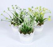 Dantelli Saksıda Yonca Çiçeği 18 Cm 3 Renk