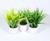 Seramik Saksıda Yapay Aloevera Çiçekleri 17 Cm 2 Renk