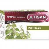 Tisan Isırgan Çayı