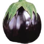 Fide Sepeti Topan Patlıcan Tohumu 25grlık 1...