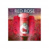 Miss Life Red Rose Oda Kokusu Otomatik 250g