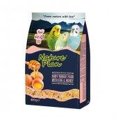 Nature Plan Ballı Yumurtalı Yavru Muhabbet Kuş Yemi 400 Gr