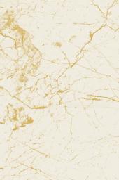 Özel Üretim Dijital Baskılı Lastikli Halı Örtüsü Marble 7005-2