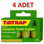 Tibtrap Zehirsiz Sinek Kapanı (4 Ad.) 4lü
