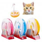 Fareli Ve Çıngıraklı Çılgın Daire Kedi Oyuncağı