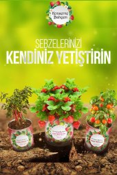 Buffer Konserve Bahçem Kıl Biber Yetiştirme Kiti-2